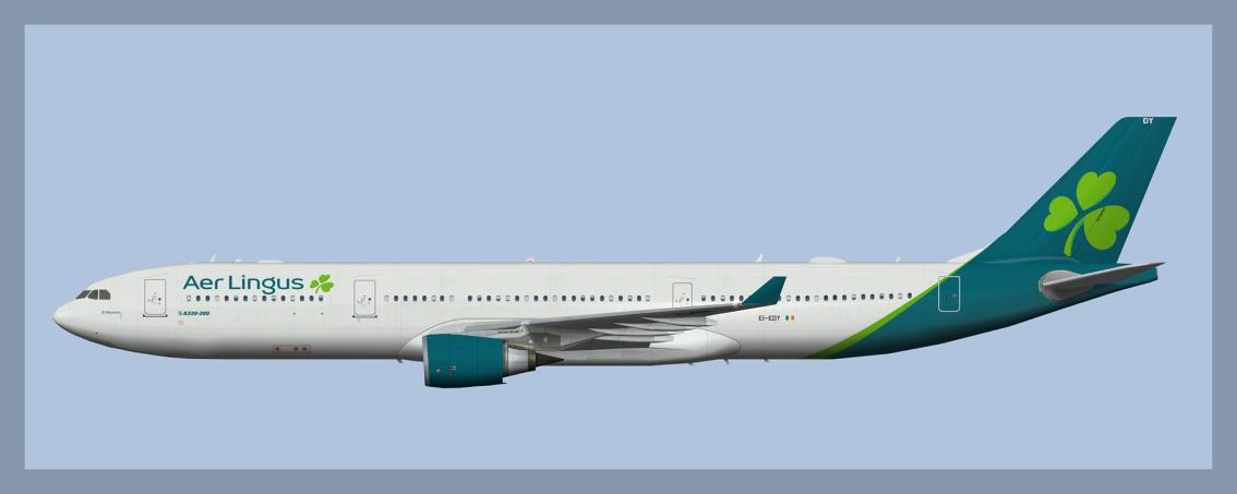 Aer Lingus Airbus A330-300 NC2019