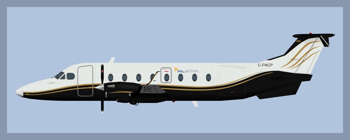 PAL Airlines Beech 1900DFleet